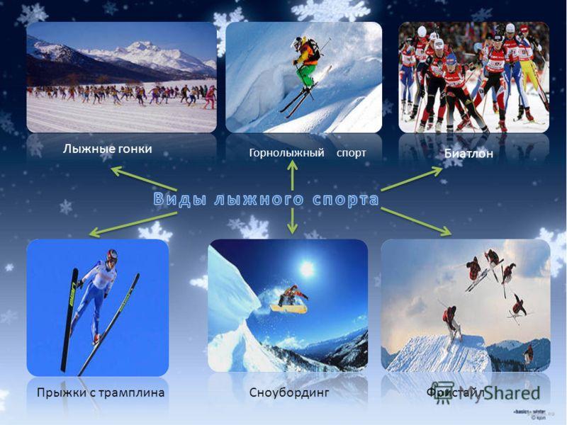 Лыжные гонки Горнолыжный спорт Биатлон Прыжки с трамплинаСноубордингФристайл