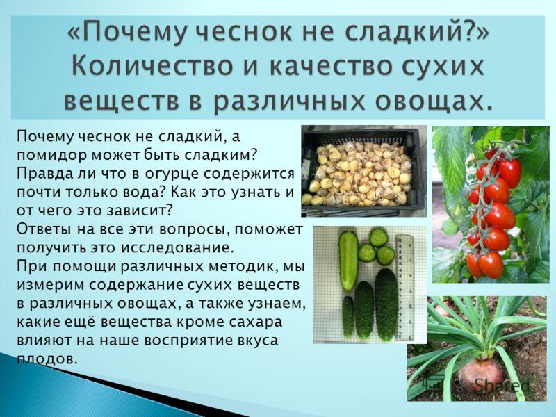 Почему чеснок не сладкий, а помидор может быть сладким? Правда ли что в огурце содержится почти только вода? Как это узнать и от чего это зависит? Ответы на все эти вопросы, поможет получить это исследование. При помощи различных методик, мы измерим