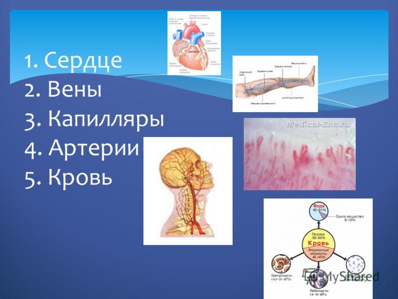 1. Сердце 2. Вены 3. Капилляры 4. Артерии 5. Кровь
