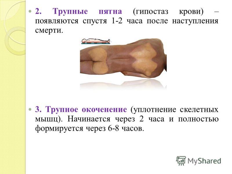 2. Трупные пятна (гипостаз крови) – появляются спустя 1-2 часа после наступления смерти. 3. Трупное окоченение (уплотнение скелетных мышц). Начинается через 2 часа и полностью формируется через 6-8 часов.