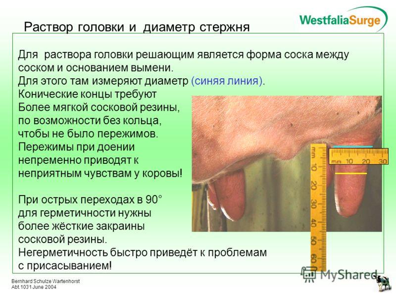 Bernhard Schulze Wartenhorst Abt.1031 June 2004 Раствор головки и диаметр стержня Для раствора головки решающим является форма соска между соском и основанием вымени. Для этого там измеряют диаметр (синяя линия). Конические концы требуют Более мягкой