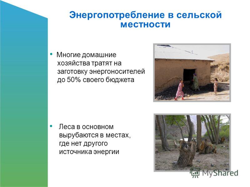 Леса в основном вырубаются в местах, где нет другого источника энергии Энергопотребление в сельской местности Многие домашние хозяйства тратят на заготовку энергоносителей до 50% своего бюджета