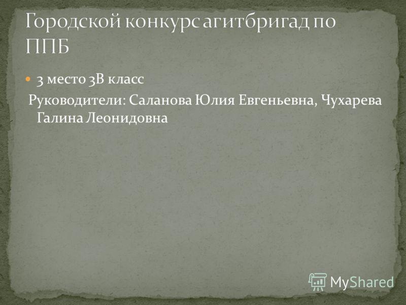 3 место 3В класс Руководители: Саланова Юлия Евгеньевна, Чухарева Галина Леонидовна