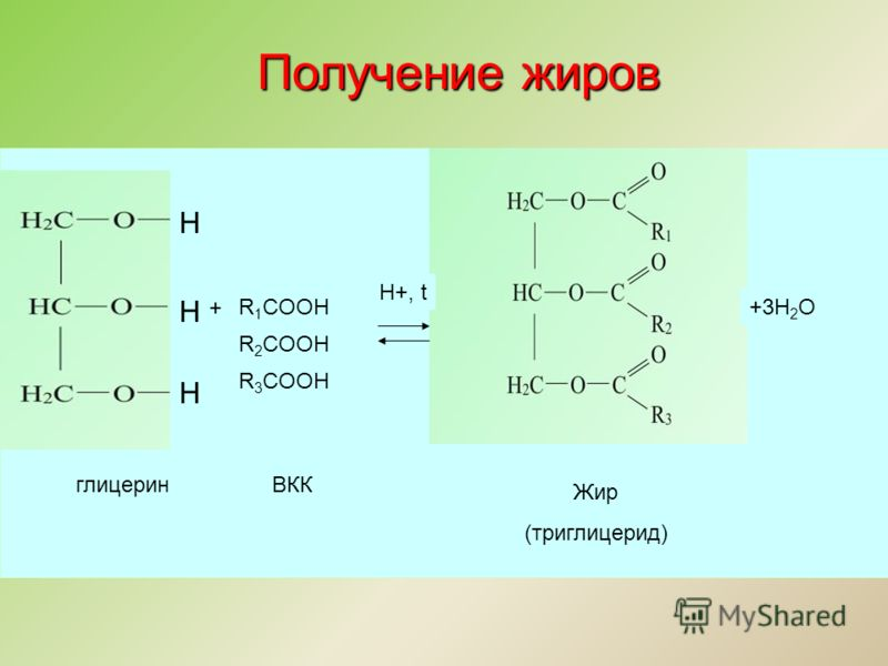 Н Н Н R 1 COOH R 2 COOH R 3 COOH + +3Н 2 О H+, t глицеринВКК Жир (триглицерид) Получение жиров