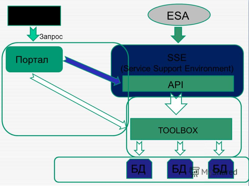 ESA SSE (Service Support Environment) Клиент TOOLBOX БД Запрос API Портал