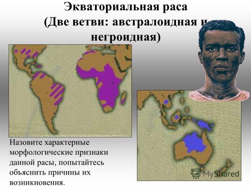 Экваториальная раса (Две ветви: австралоидная и негроидная) Назовите характерные морфологические признаки данной расы, попытайтесь объяснить причины их возникновения.