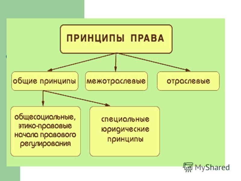 Принципы права:понятие классификация значение