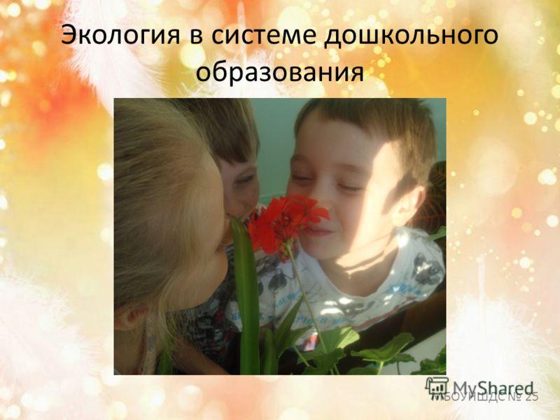 Экология в системе дошкольного образования МБОУНШДС 25