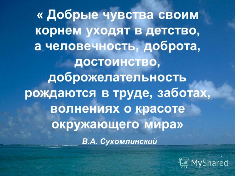 « Добрые чувства своим корнем уходят в детство, а человечность, доброта, достоинство, доброжелательность рождаются в труде, заботах, волнениях о красоте окружающего мира» В.А. Сухомлинский