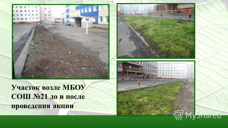 Участок возле МБОУ СОШ 21 до и после проведения акции