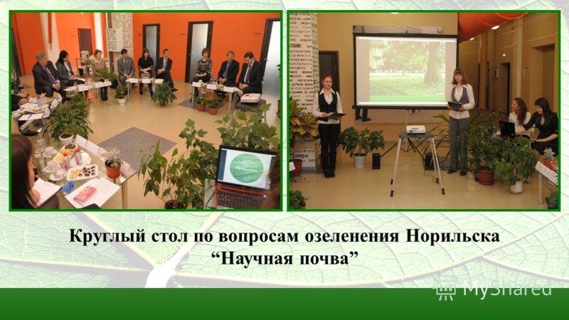Круглый стол по вопросам озеленения Норильска Научная почва