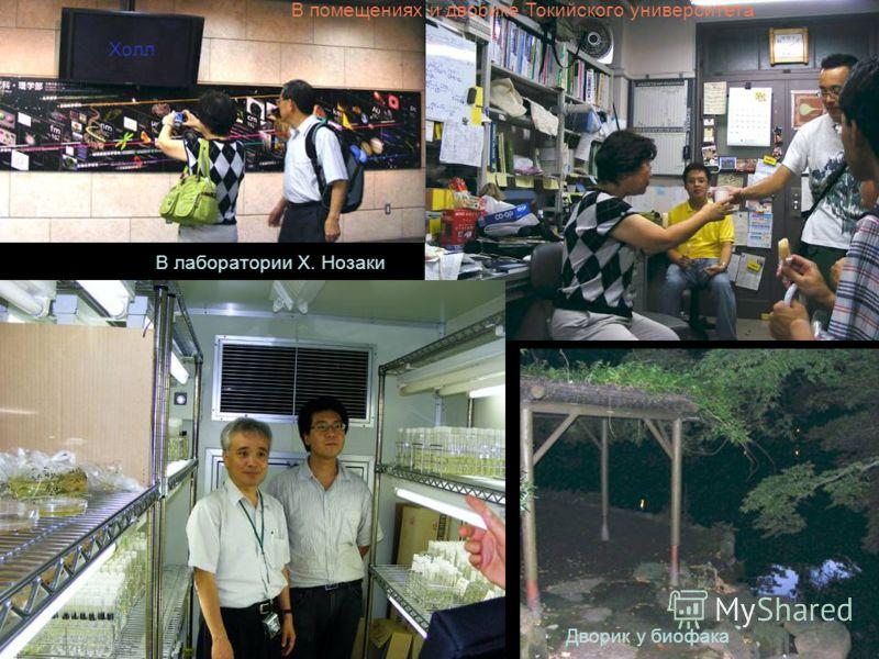 В лаборатории Х. Нозаки Дворик у биофака Холл В помещениях и дворике Токийского университета