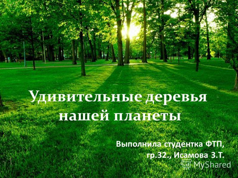 Выполнила студентка ФТП, гр.32., Исамова З.Т. Удивительные деревья нашей планеты