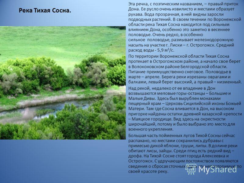 Река Тихая Сосна. Эта речка, с поэтическим названием, – правый приток Дона. Ее русло очень извилисто и местами образует рукава. Вода прозрачная, в ней видны заросли подводных растений. В своем течении по Воронежской области река Тихая Сосна находится