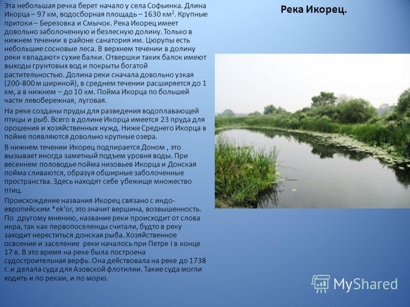 Река Икорец. Эта небольшая речка берет начало у села Софьинка. Длина Икорца – 97 км, водосборная площадь – 1630 км 2. Крупные притоки – Березовка и Смычок. Река Икорец имеет довольно заболоченную и безлесную долину. Только в нижнем течении в районе с