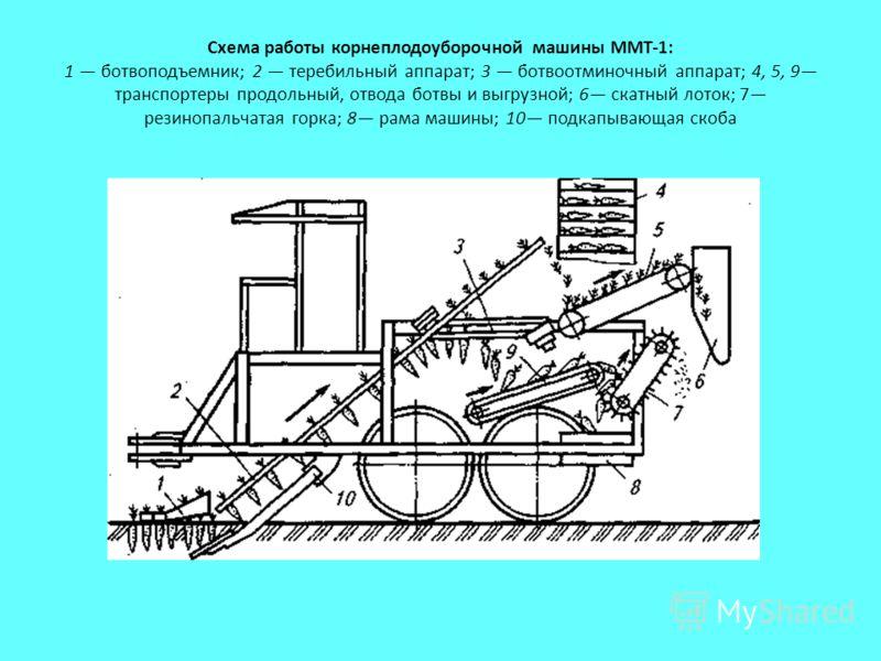 Схема работы корнеплодоуборочной машины ММТ-1: 1 ботвоподъемник; 2 теребильный аппарат; 3 ботвоотминочный аппарат; 4, 5, 9 транспортеры продольный, отвода ботвы и выгрузной; 6 скатный лоток; 7 резинопальчатая горка; 8 рама машины; 10 подкапывающая ск