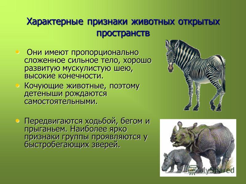 Характерные признаки животных открытых пространств Они имеют пропорционально сложенное сильное тело, хорошо развитую мускулистую шею, высокие конечности. Они имеют пропорционально сложенное сильное тело, хорошо развитую мускулистую шею, высокие конеч