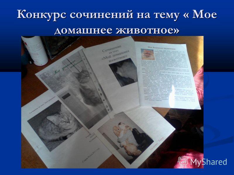 Конкурс сочинений на тему « Мое домашнее животное»