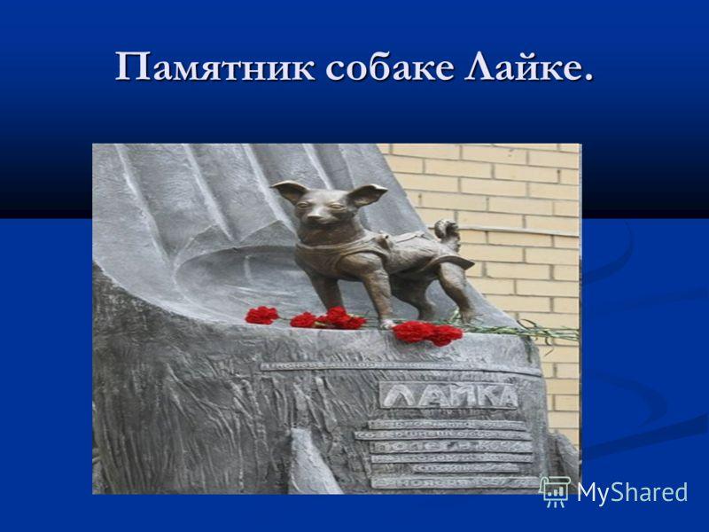 Памятник собаке Лайке.