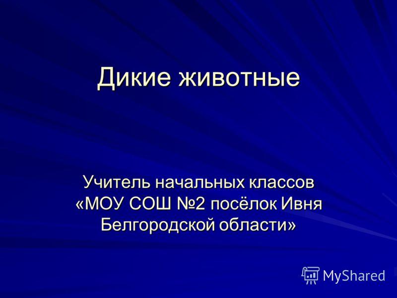 Дикие животные Учитель начальных классов «МОУ СОШ 2 посёлок Ивня Белгородской области»