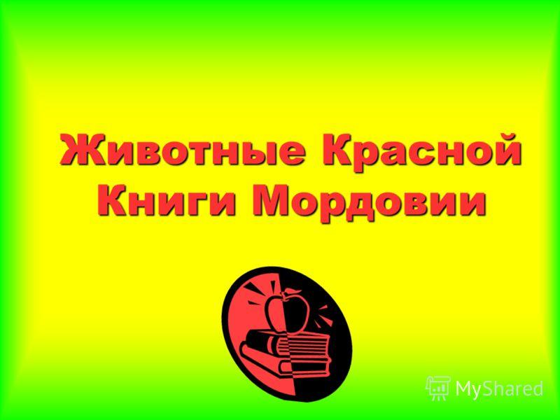 Животные Красной Книги Мордовии
