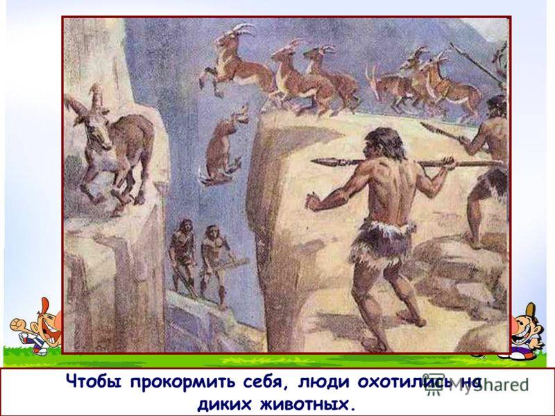 9 Как появились домашние животные? Давным-давно на Земле были только дикие животные, дикая природа и племена людей.
