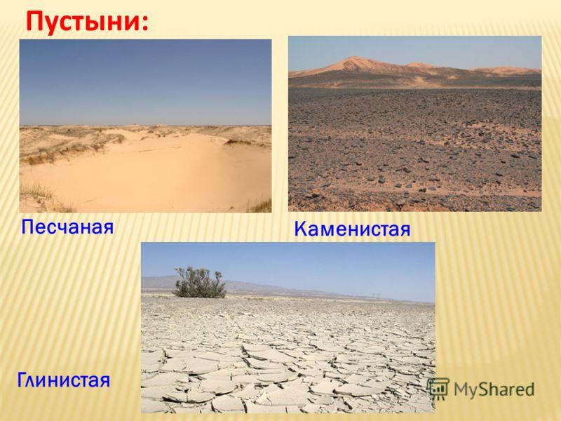 Пустыни: Каменистая Песчаная Глинистая