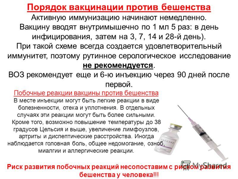 Порядок вакцинации против бешенcтва Активную иммунизацию начинают немедленно. Вакцину вводят внутримышечно по 1 мл 5 раз: в день инфицирования, затем на 3, 7, 14 и 28-й день). При такой схеме всегда создается удовлетворительный иммунитет, поэтому рут