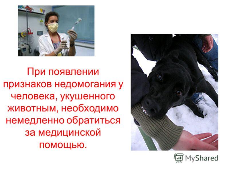 При появлении признаков недомогания у человека, укушенного животным, необходимо немедленно обратиться за медицинской помощью.