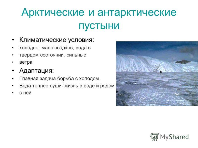 Арктические и антарктические пустыни Климатические условия: холодно, мало осадков, вода в твердом состоянии, сильные ветра Адаптация: Главная задача-борьба с холодом. Вода теплее суши- жизнь в воде и рядом с ней