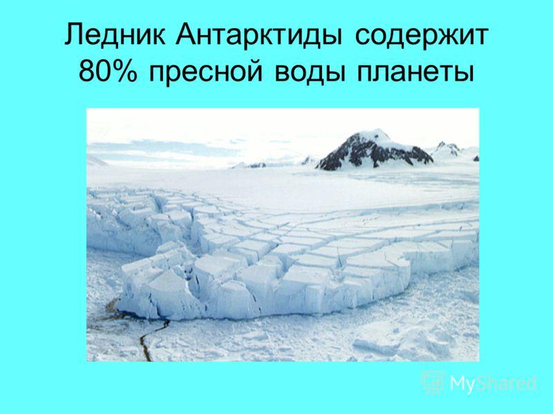 Ледник Антарктиды содержит 80% пресной воды планеты