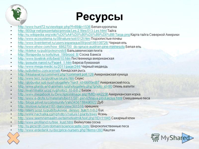 Ресурсы http://www.hunt72.ru/viewtopic.php?f=69&t=1536 Белая куропаткаhttp://www.hunt72.ru/viewtopic.php?f=69&t=1536 http://900igr.net/prezentatsii/priroda/Les-2.files/013-Les.html Тайгаhttp://900igr.net/prezentatsii/priroda/Les-2.files/013-Les.html