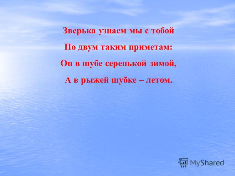 Зверька узнаем мы с тобой По двум таким приметам: Он в шубе серенькой зимой, А в рыжей шубке – летом.