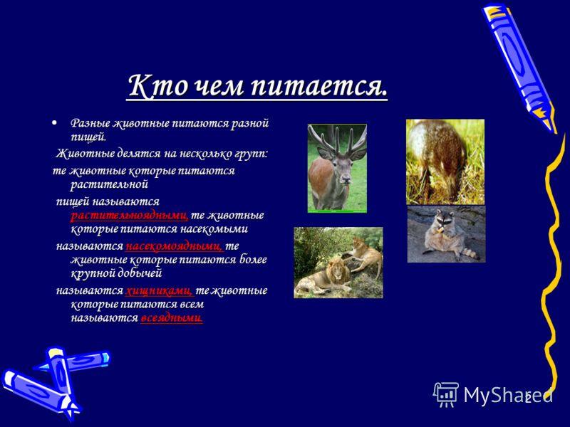 2 Разные животные питаются разной пищей.Разные животные питаются разной пищей. Животные делятся на несколько групп: Животные делятся на несколько групп: те животные которые питаются растительной те животные которые питаются растительной пищей называю
