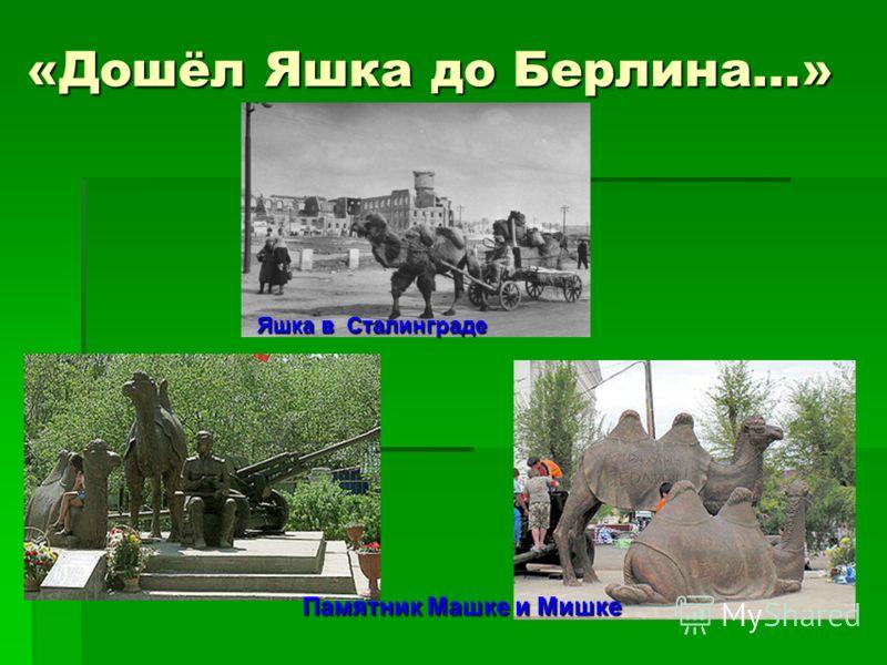 «Дошёл Яшка до Берлина…» Памятник Машке и Мишке Яшка в Сталинграде