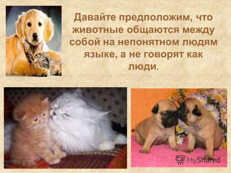 Давайте предположим, что животные общаются между собой на непонятном людям языке, а не говорят как люди.