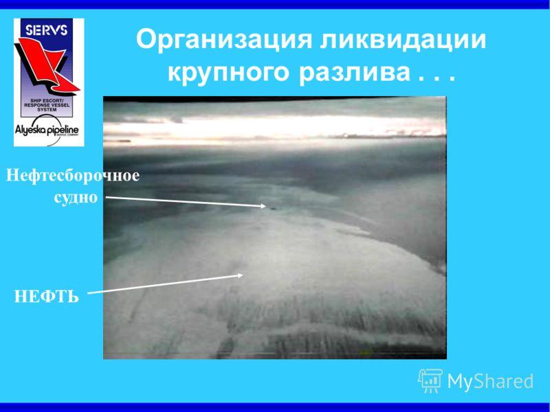 Организация ликвидации крупного разлива... Нефтесборочное судно НЕФТЬ
