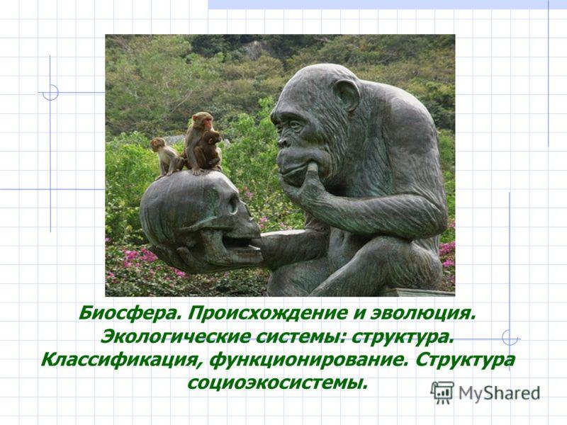 Биосфера. Происхождение и эволюция. Экологические системы: структура. Классификация, функционирование. Структура социоэкосистемы.