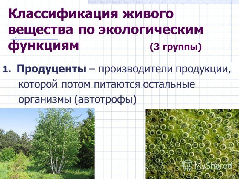 Классификация живого вещества по экологическим функциям (3 группы) 1. Продуценты – производители продукции, которой потом питаются остальные организмы (автотрофы)