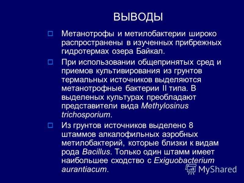 ВЫВОДЫ Метанотрофы и метилобактерии широко распространены в изученных прибрежных гидротермах озера Байкал. При использовании общепринятых сред и приемов культивирования из грунтов термальных источников выделяются метанотрофные бактерии II типа. В выд