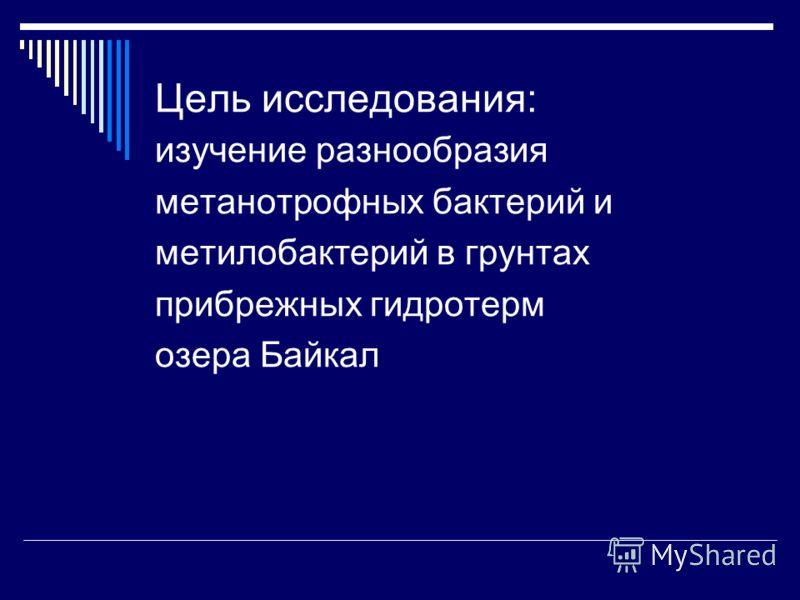 Цель исследования: изучение разнообразия метанотрофных бактерий и метилобактерий в грунтах прибрежных гидротерм oзера Байкал