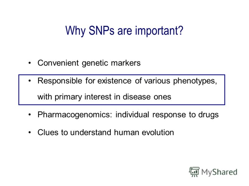 Why SNPs are important? Convenient genetic markers Responsible for existence of various phenotypes, with primary interest in disease ones Pharmacogenomics: individual response to drugs Clues to understand human evolution