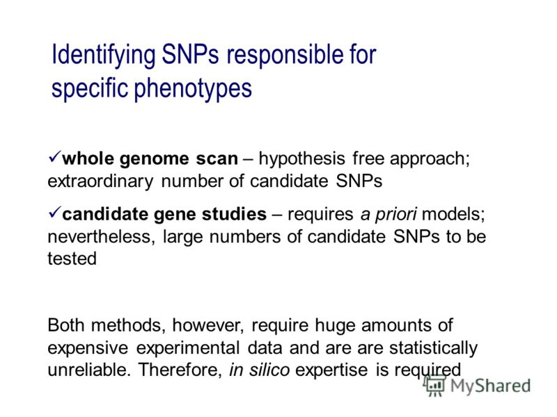 Identifying SNPs responsible for specific phenotypes whole genome scan – hypothesis free approach; extraordinary number of candidate SNPs candidate gene studies – requires a priori models; nevertheless, large numbers of candidate SNPs to be tested Bo