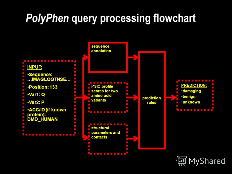 PolyPhen query processing flowchart INPUT: Sequence: …IMAGLQQTNSE… Position: 133 Var1: Q Var2: P ACC/ID (if known protein): DMD_HUMAN sequence annotation PSIC profile scores for two amino acid variants structural parameters and contacts prediction ru