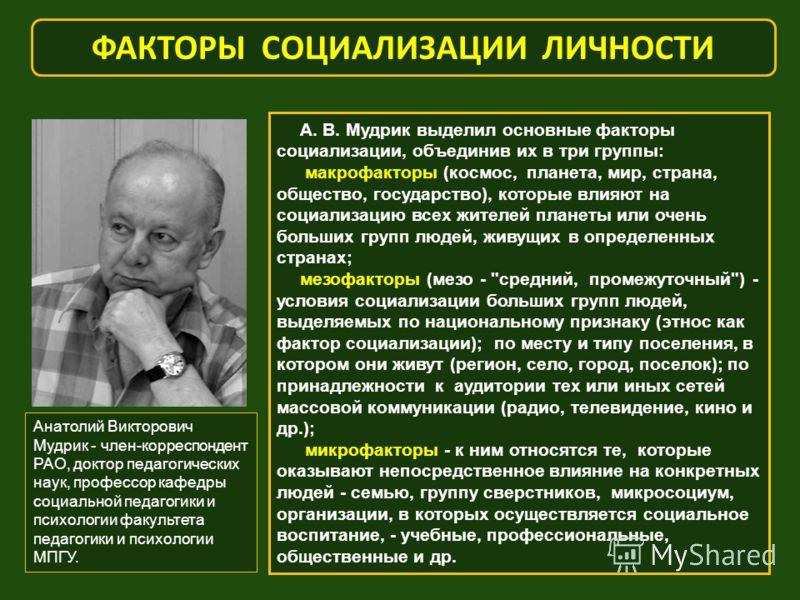 А. В. Мудрик выделил основные факторы социализации, объединив их в три группы: макрофакторы (космос, планета, мир, страна, общество, государство), которые влияют на социализацию всех жителей планеты или очень больших групп людей, живущих в определенн