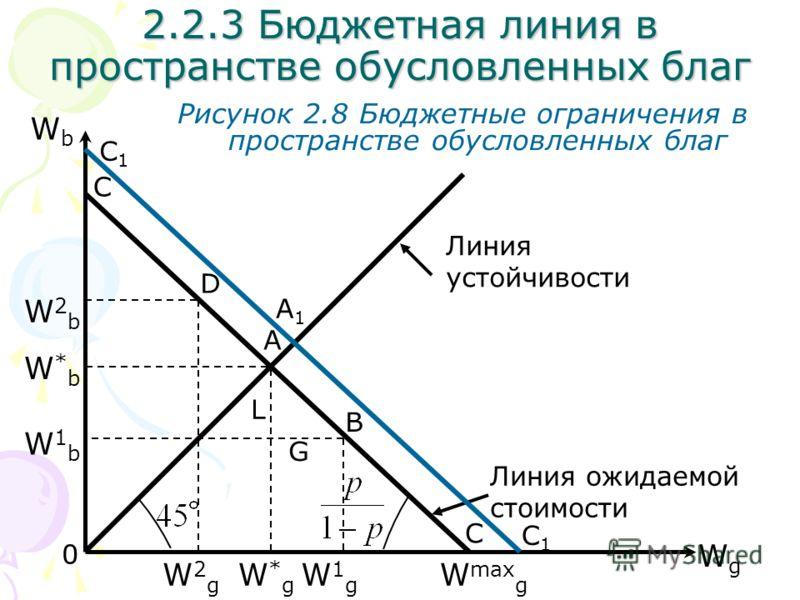 WgWg WbWb Рисунок 2.8 Бюджетные ограничения в пространстве обусловленных благ С 2.2.3 Бюджетная линия в пространстве обусловленных благ С A D B W max g W1gW1g W2gW2g W*gW*g 0 Линия устойчивости W2bW2b W*bW*b W1bW1b L G Линия ожидаемой стоимости С1С1