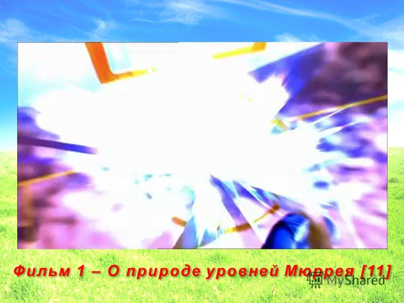 18 Фильм 1 – О природе уровней Мюррея [11]