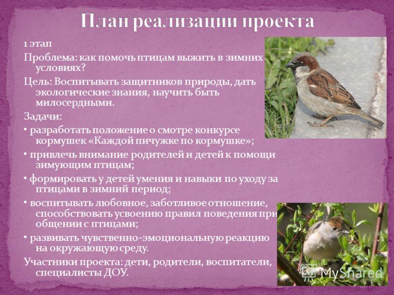 1 этап Проблема: как помочь птицам выжить в зимних условиях? Цель: Воспитывать защитников природы, дать экологические знания, научить быть милосердными. Задачи: разработать положение о смотре конкурсе кормушек «Каждой пичужке по кормушке»; привлечь в