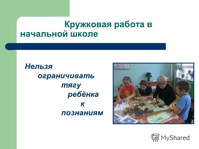 Кружковая работа в начальной школе Нельзя ограничивать тягу ребёнка к познаниям