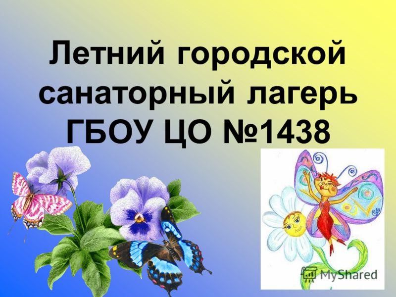 Летний городской санаторный лагерь ГБОУ ЦО 1438